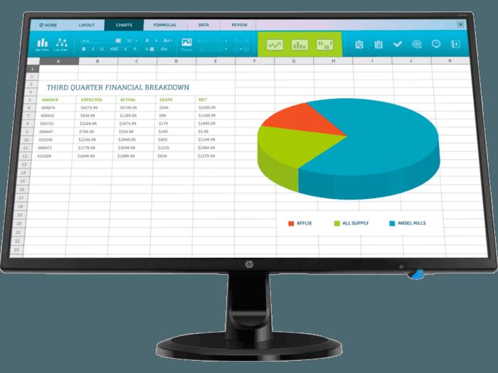HP N246v 23 8-inch Monitor